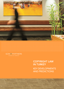 Copyright Law in Turkey Key Developmentr and Predictions